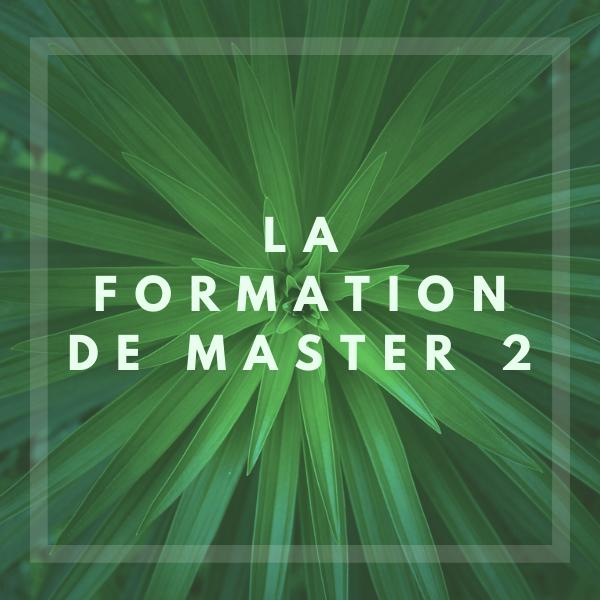 Master 2 Management de la Transition Écologique et de l'économie Circulaire